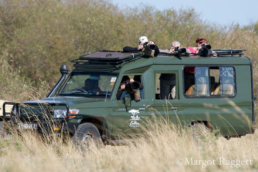 entim-photo-safari.jpg