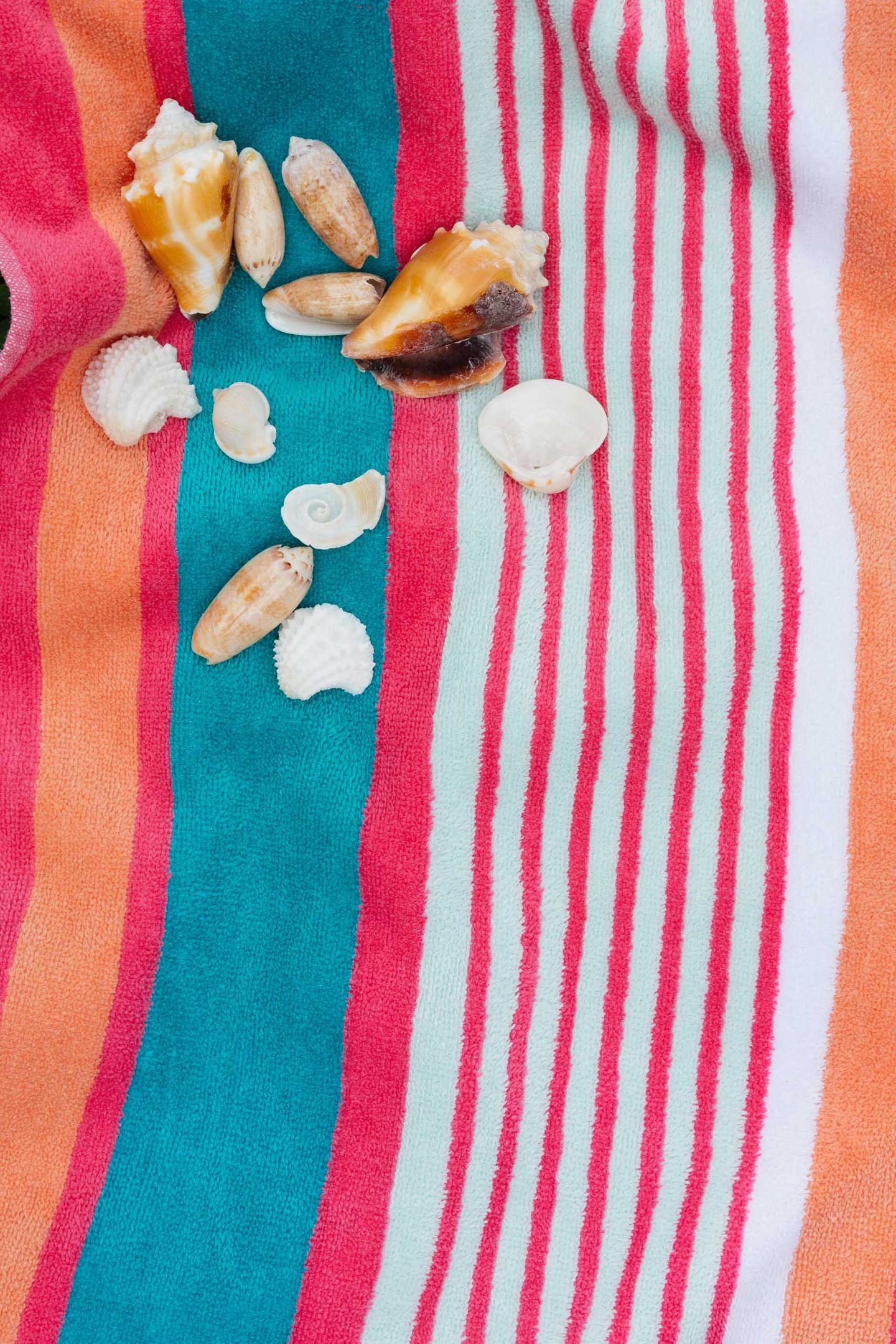 Seashells on  towel
