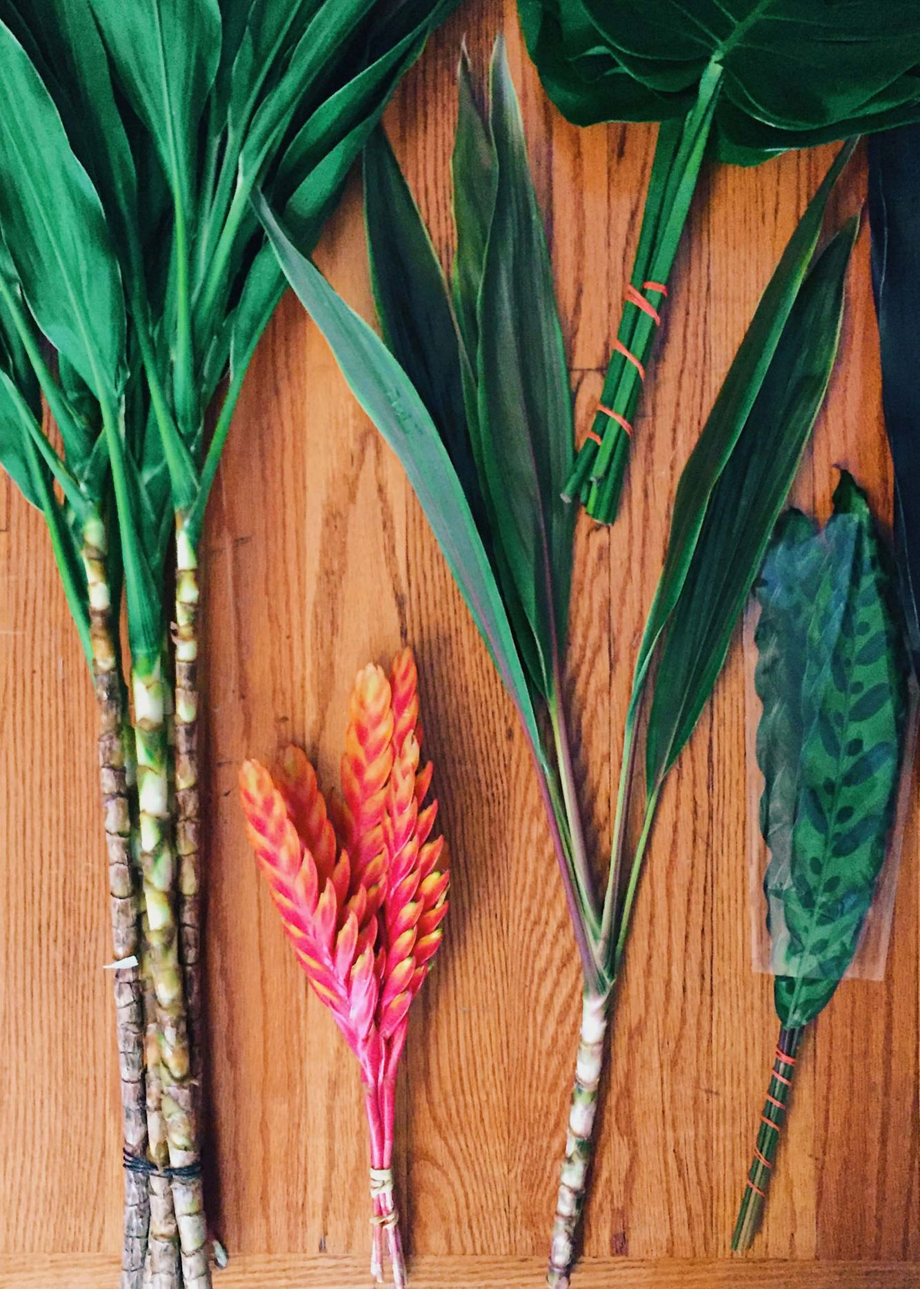 Bunches of tropical leaves