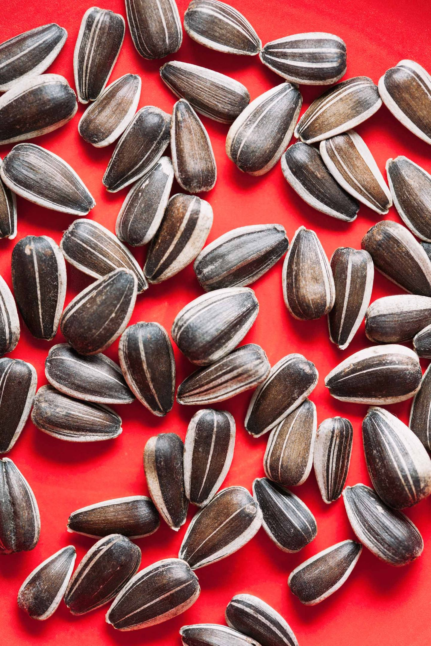 Whole sunflower seeds in shell on red surface