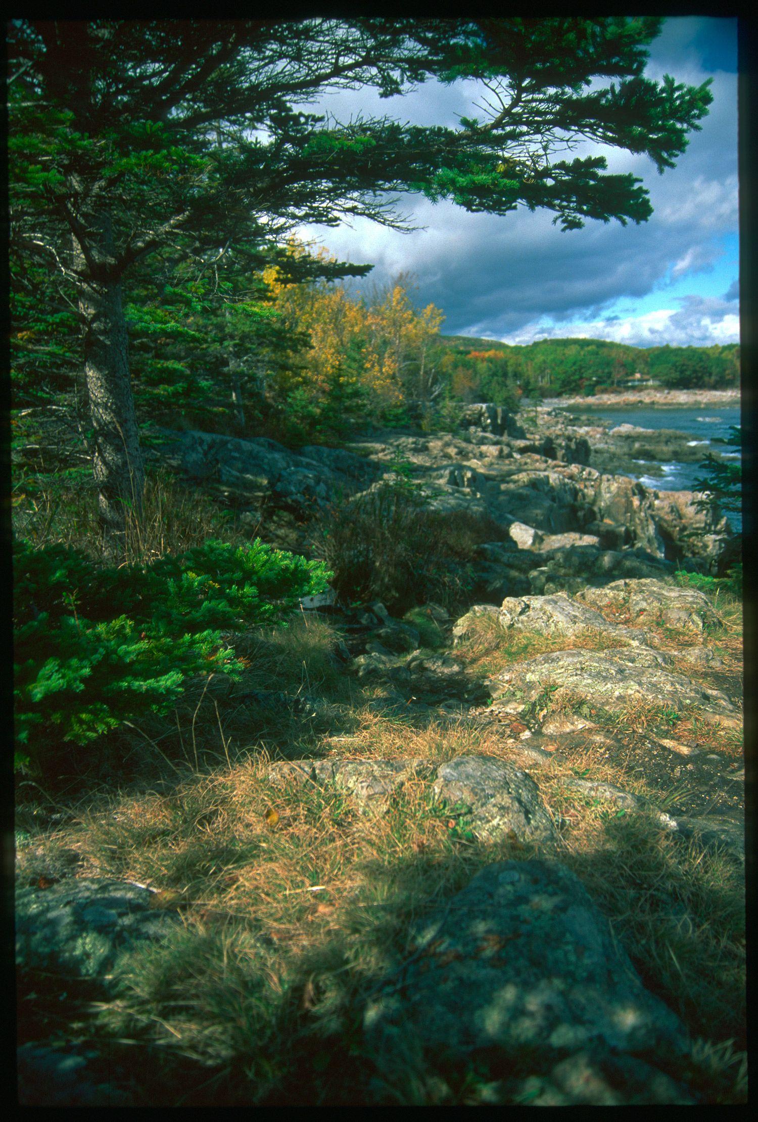 Acadia National Park, 2009