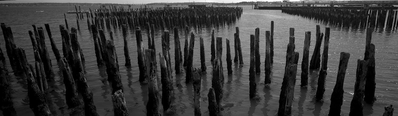 Harbor Pilings, Portland Maine