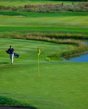 Golf_31.jpg