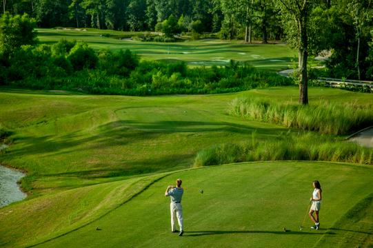 Golf_08.jpg