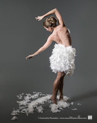 White-Swan-1.jpg