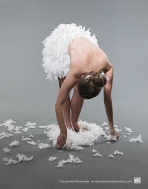 White Swan by Cassandra Plavoukos