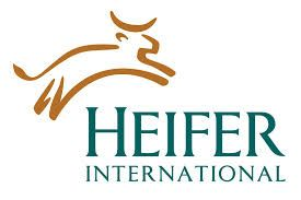 Heifer-International1.jpg