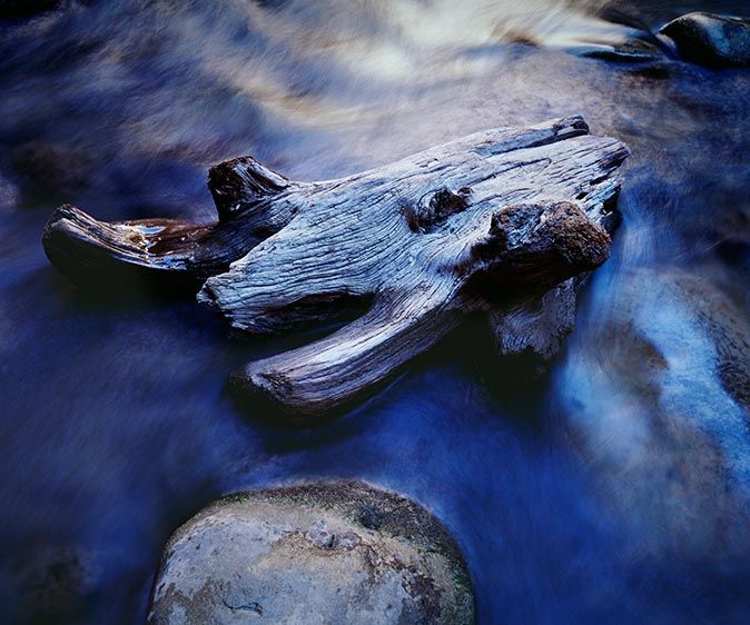 1blue_driftwood_m7_2349.jpg