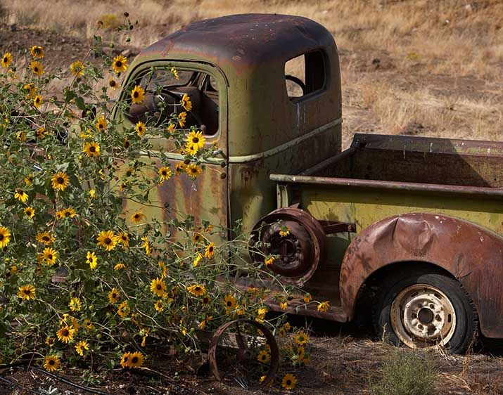 1truck_and_flowers_1ds_7355.jpg