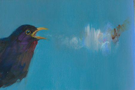 Cursing Blackbird