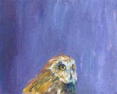 Pliny's Owl
