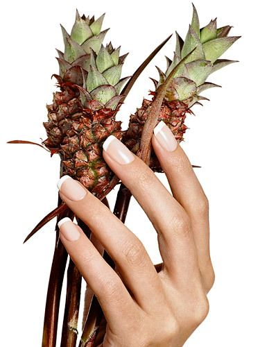 Hand with Baby Pineapples.