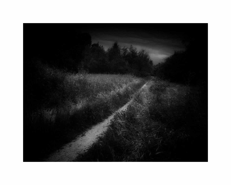 Trail_1814.16x20.b&w.jpg