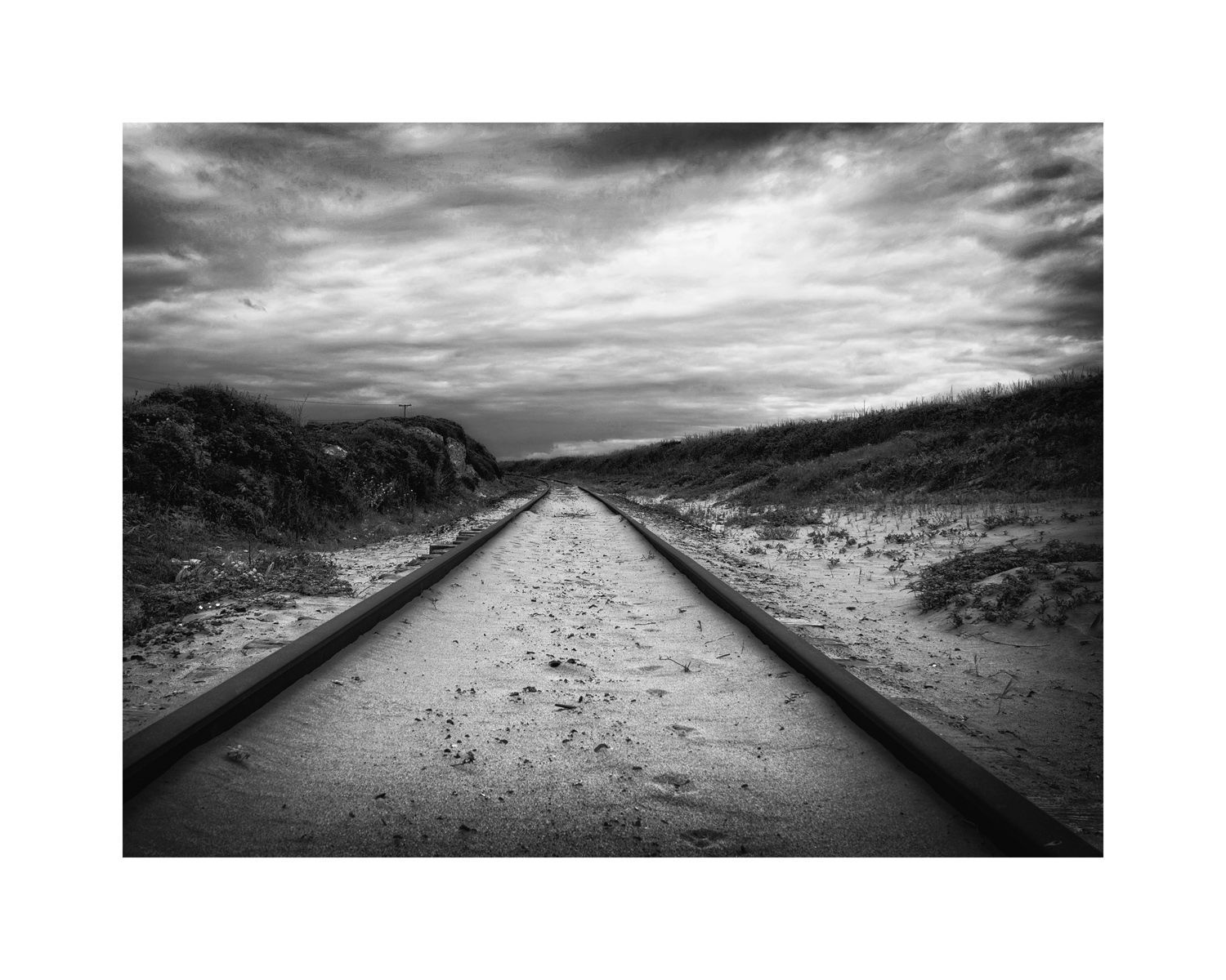1tracks_in_the_sand_16x20