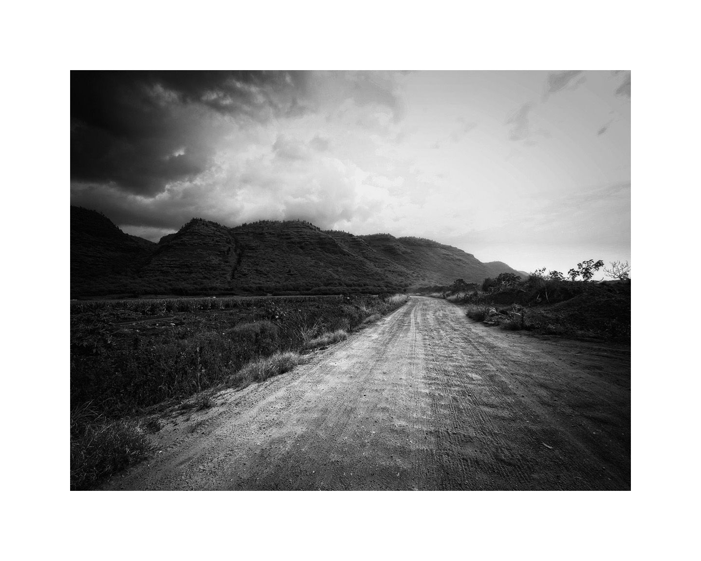 1road_to_barking_sands_16x20_b_w