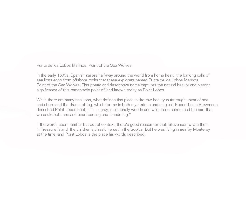 1punta_de_los_lobos_marinos__point_of_the_sea_wolves