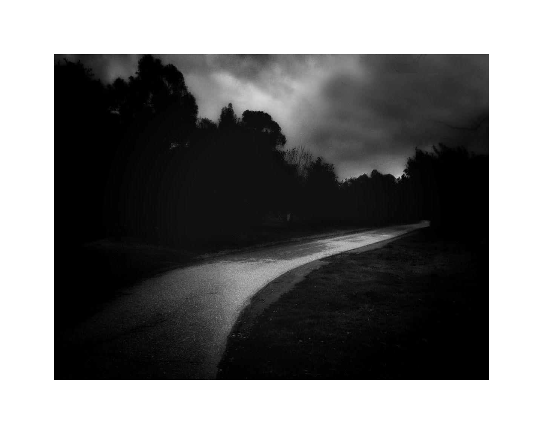 LGT Trail dark 16x20 b&w.jpg
