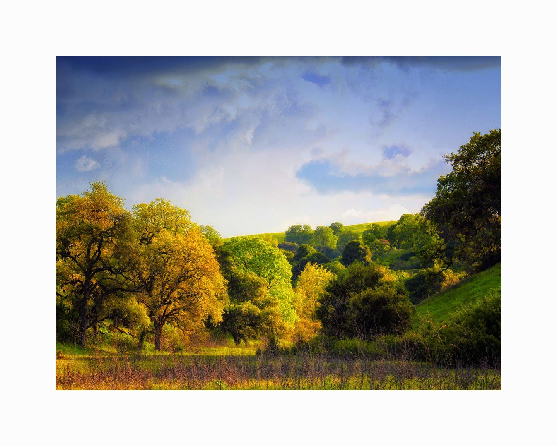 1stanford_hills_0615_16x20_color