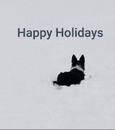 Happy Holidays 2019 .jpg