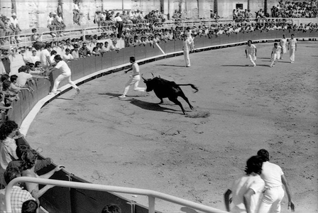 Feria Corridas, Ancient Arles Arena, France
