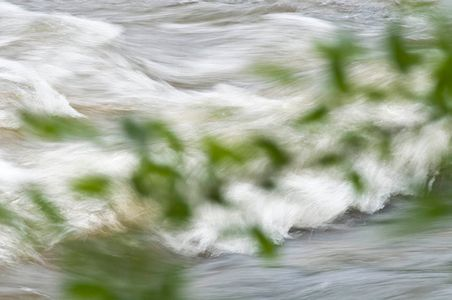 Flint River, Georgia