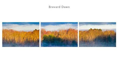 1brevard_dawn.jpg