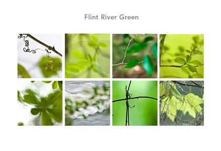 Flint River Green