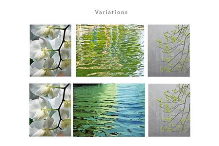 1variations_web.jpg
