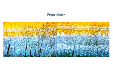 Fripp Marsh