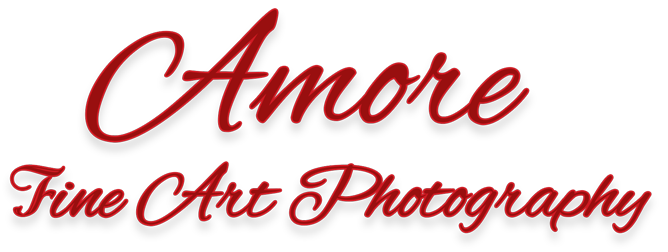 Amore Fine Art Photography