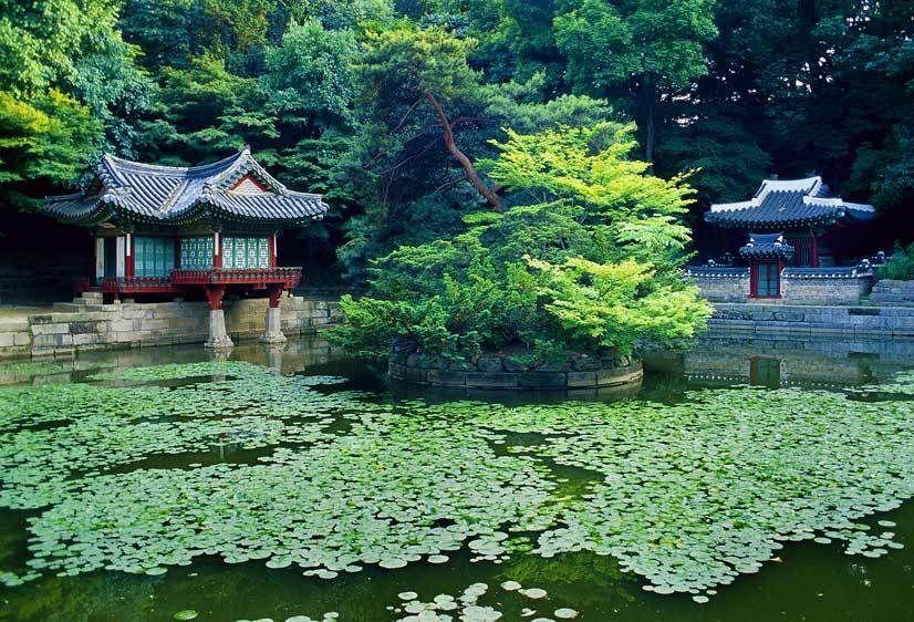 Biwon (Secret Garden), Changdoekkung Palace