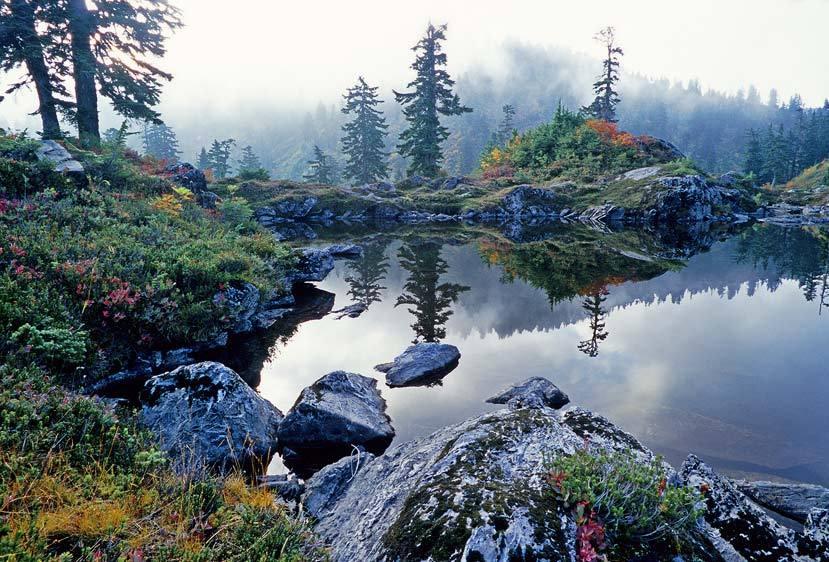 Autumn Mist, Cutthroat Lakes