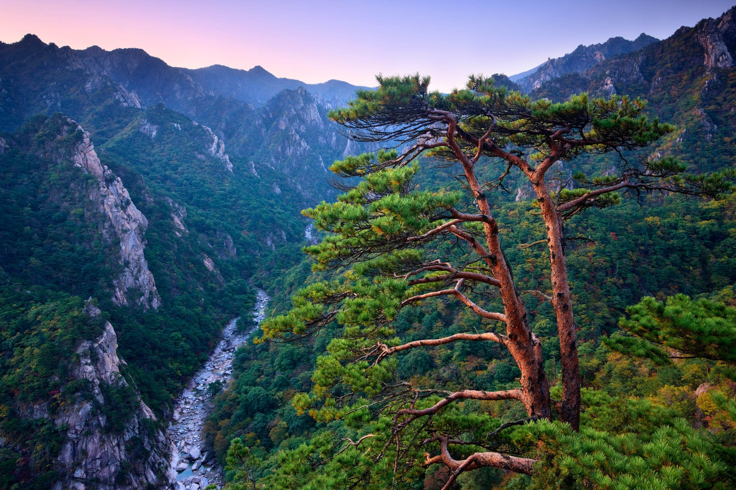 Above BiSeonDae