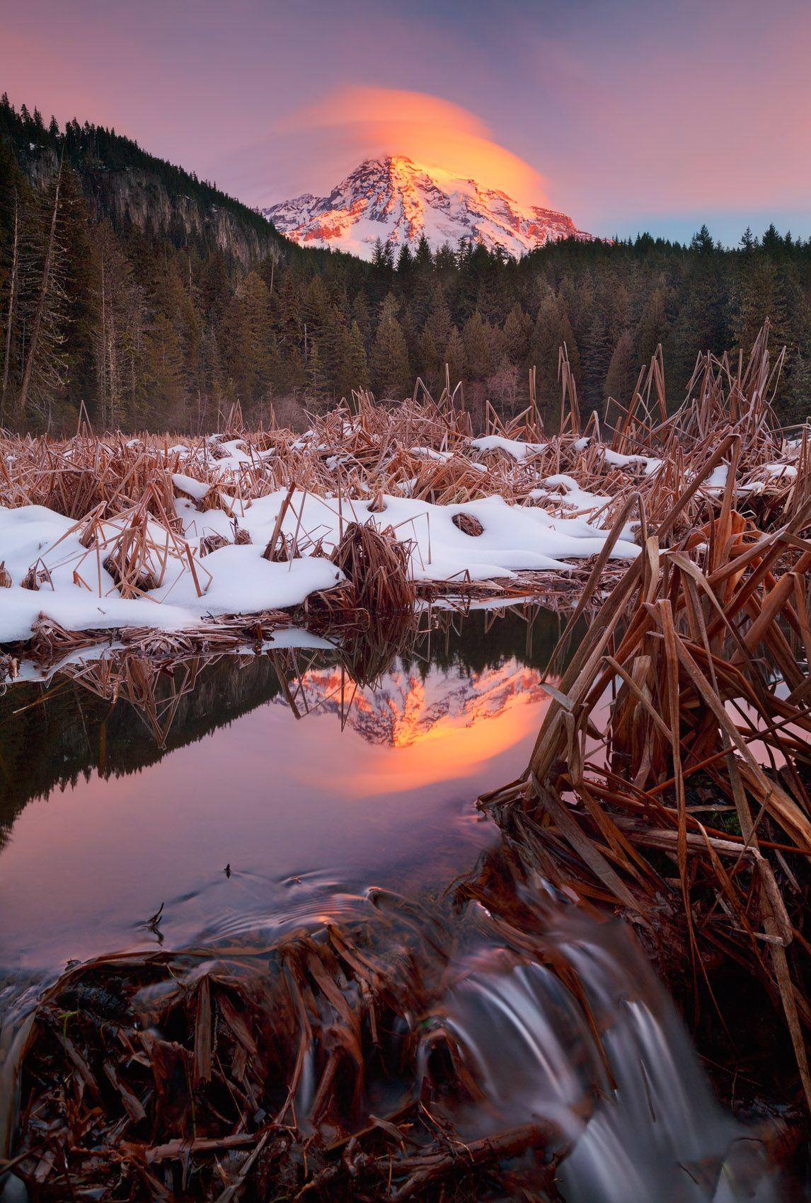 Winter Spring,Mountain Meadow