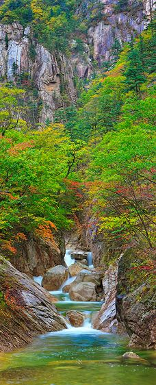 Early Autumn Gorge, Seoraksan National Park (Vertical Panorama)