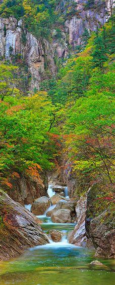 Early Autumn Gorge, Seoraksan National Park (Vertical Panorama)