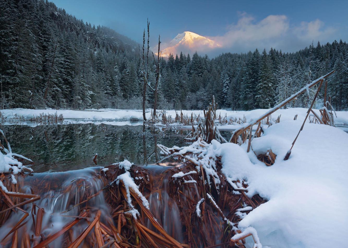 Longmire Springs, Christmas 2016