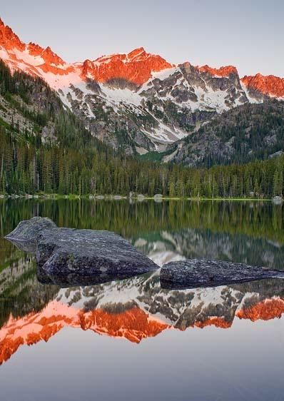 Lake Stuart Reflection (Vertical)