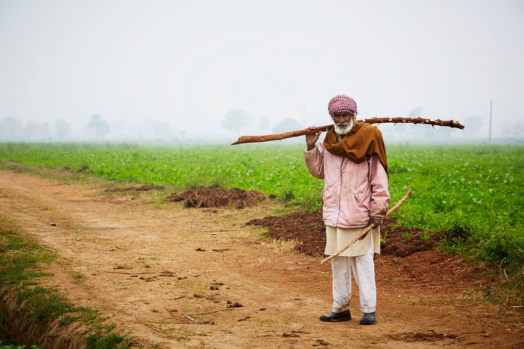 1r21_2015_01_india_jalalpur_0162.jpg