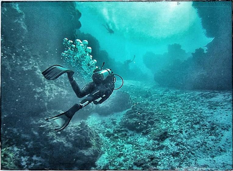 Palancar Reef/Cozumel Mexico