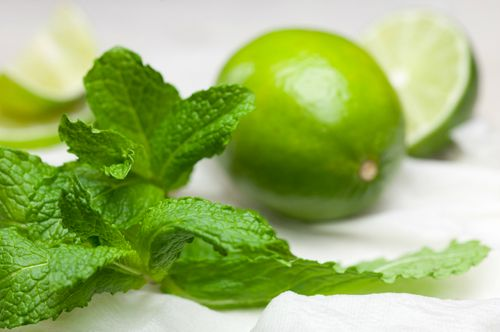 fresh limes with green leaves