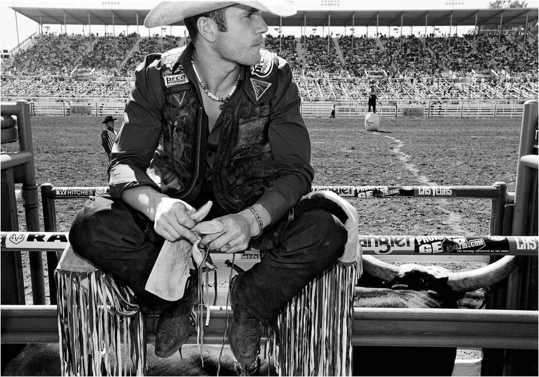 Cowboy in the Chutes - Caliornia Rodeo Salinas