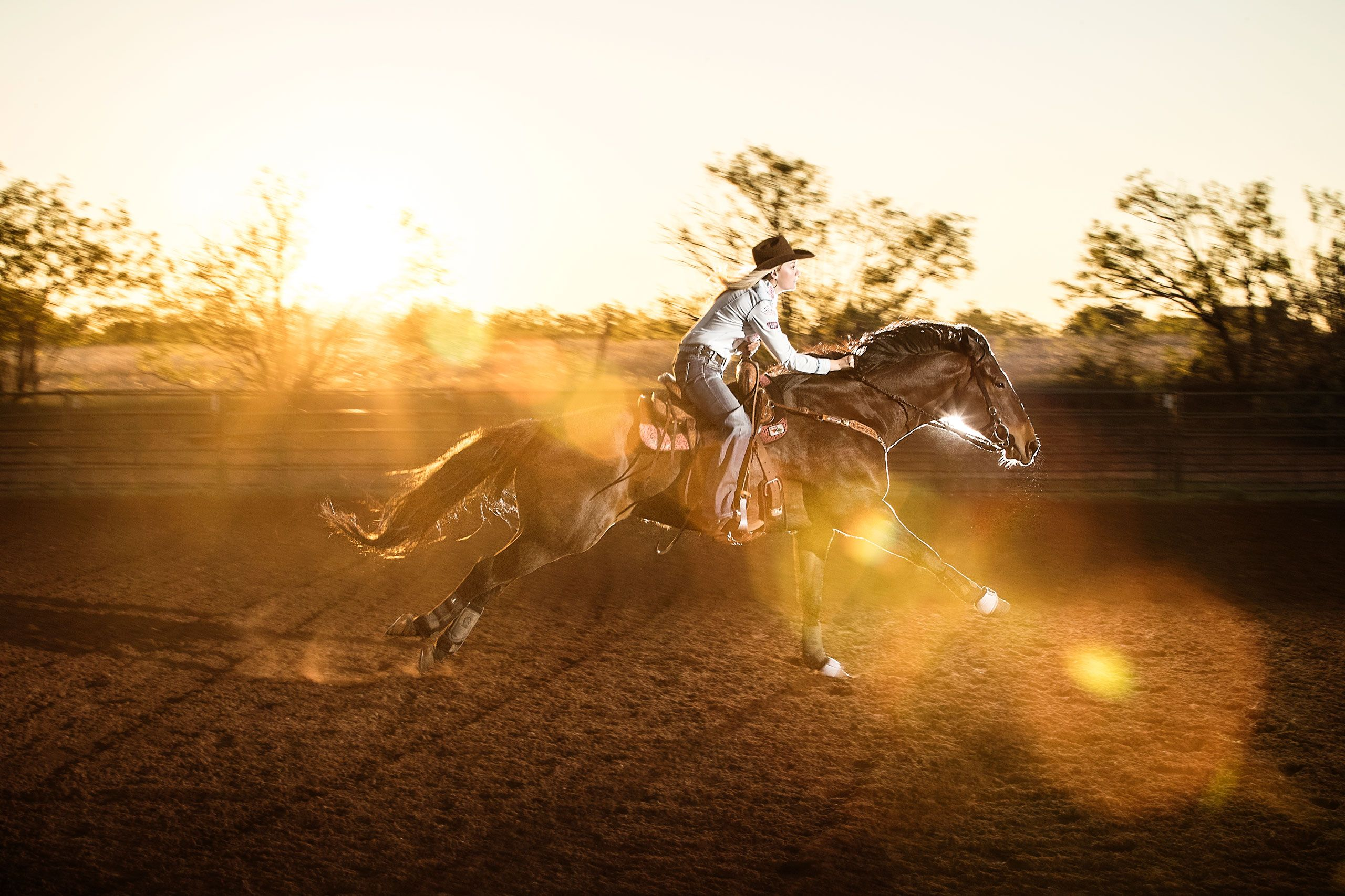 Equestrian Photography in Florida