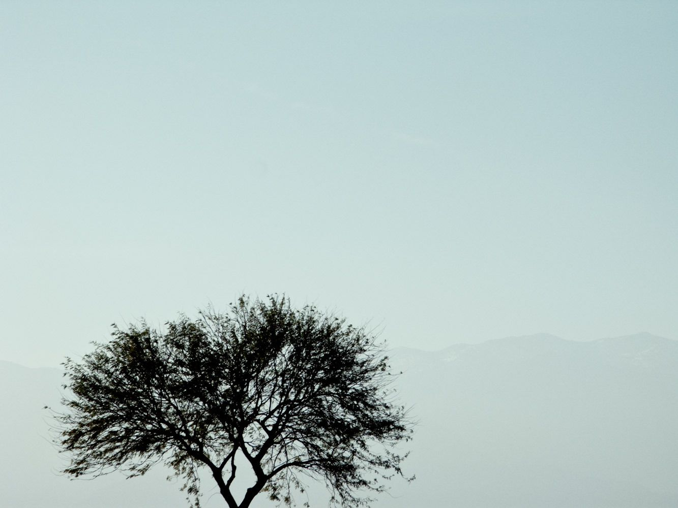 Professional Landscape Photography