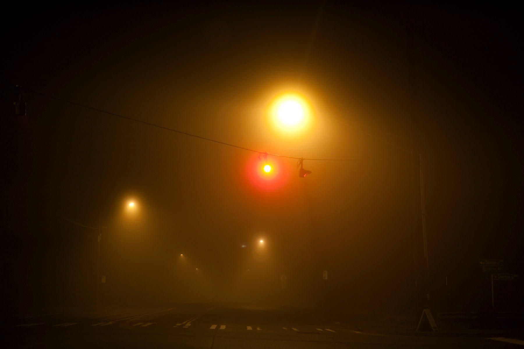 1night_0016
