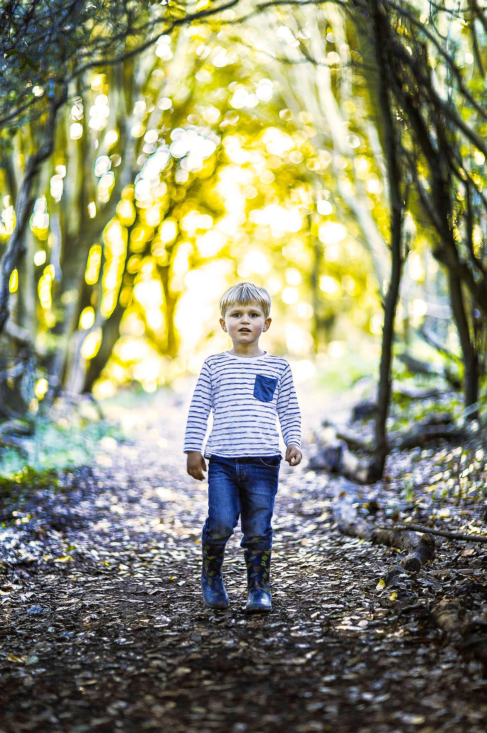 Autumn_Sun.jpg