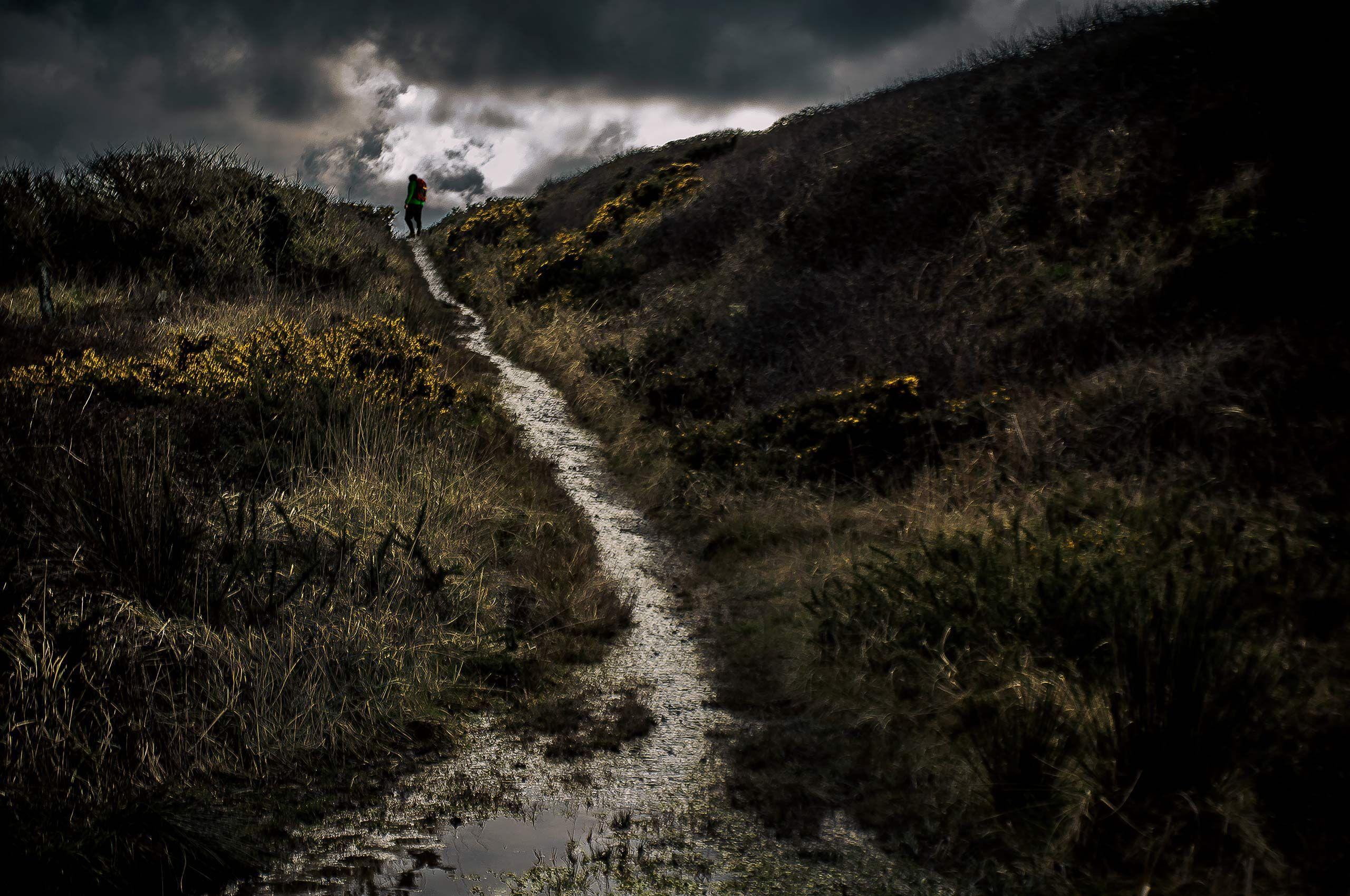 Wet_Dorset_Walker.jpg