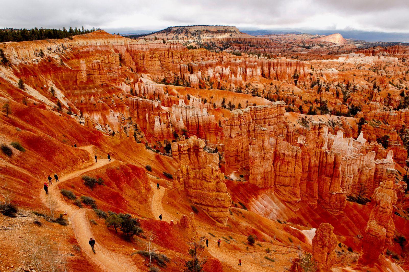 Utah_0972 2.jpg