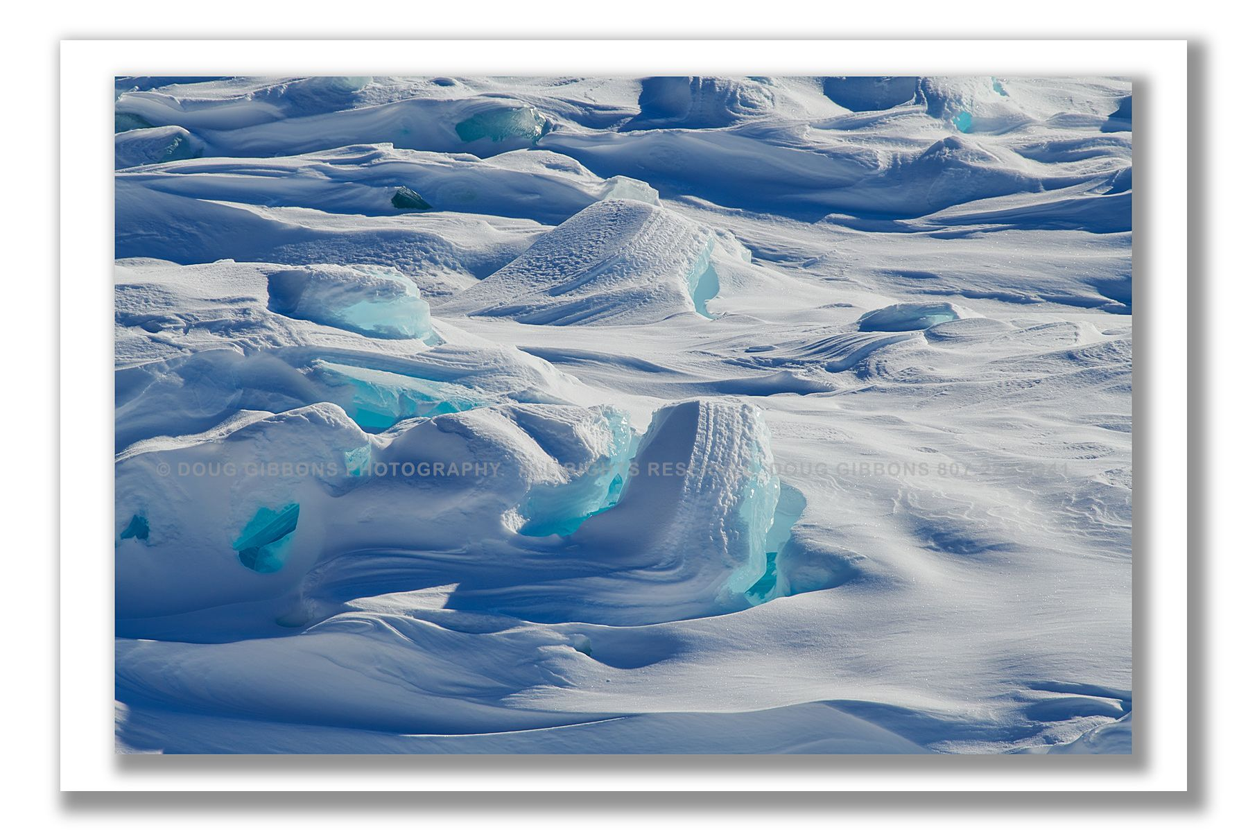 Polar-Bliss-II