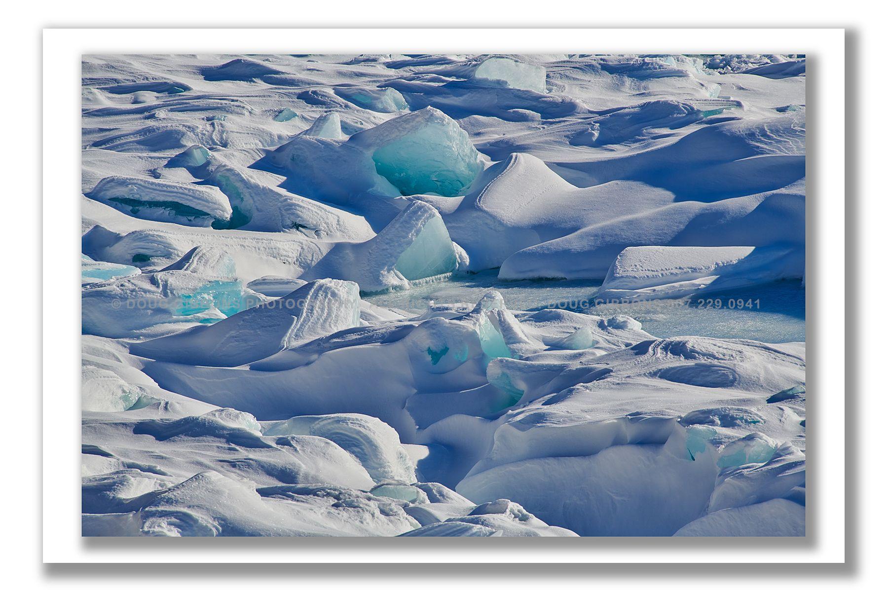 Polar Bliss